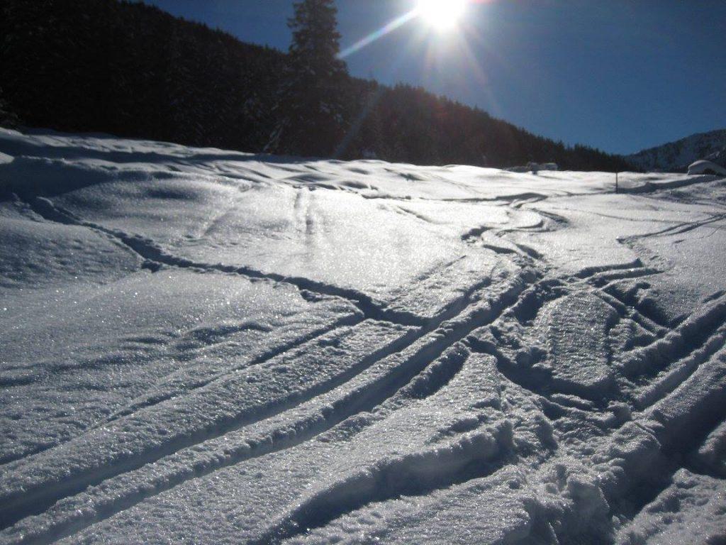 Foto Ski Spuren im Tiefschnee