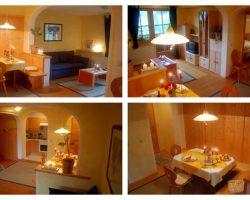 Bild Zusammenschnitt Appartements